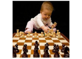 Шахи, шашки та нарди