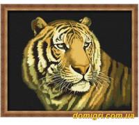 Рисование по номерам - Животные, птицы - Взгляд тигра (G036 Идейка)