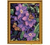 Рисование по номерам - Цветы, фрукты - Бабочки на цветах (MG129 Идейка)