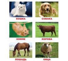Карточки по Доману - Лото. Животные (Вундеркинд с пеленок)