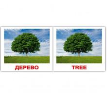 Карточки по Доману Мини-80 (Рус/Англ) - Природа/Nature (Вундеркинд с пеленок)
