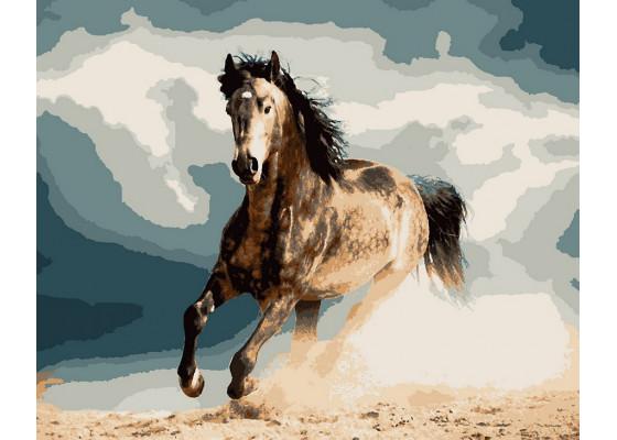 Картина по номерам Конь в яблоках 40*50 см