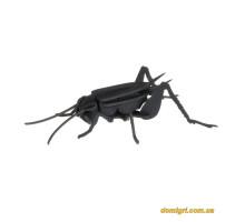 Цвіркун |Cricket Fridolin 3D модель
