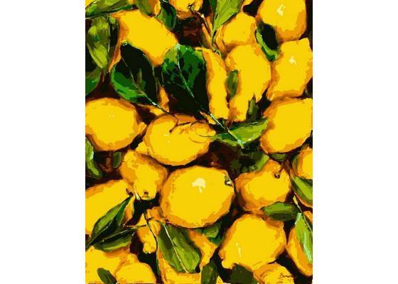 Картина по номерам Сочные лимоны 40*50 см